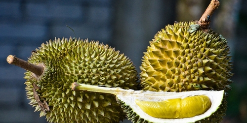 durian_fruit-2.jpg